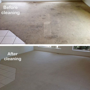 carpet-cleaning-internal